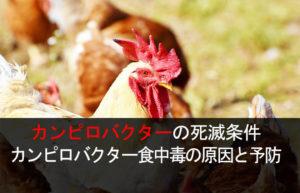 カンピロバクターの死滅条件 カンピロバクター食中毒の原因と予防