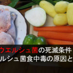ウエルシュ菌の死滅条件 ウエルシュ菌食中毒の原因と予防